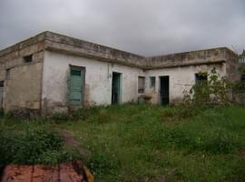 Finca en La Orotava - zona La Luz
