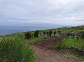 Casa terrera con finca en San Juan de la Rambla - zona San José