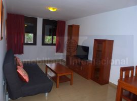 Flat in Puerto de la Cruz - City center